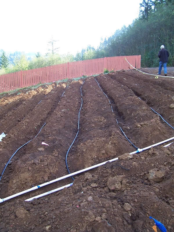 "A ""drip"" drainfield installed prior to backfill."